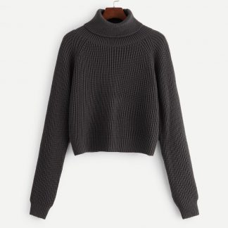 Plus Rolled Neck Raglan Sleeve Jumper